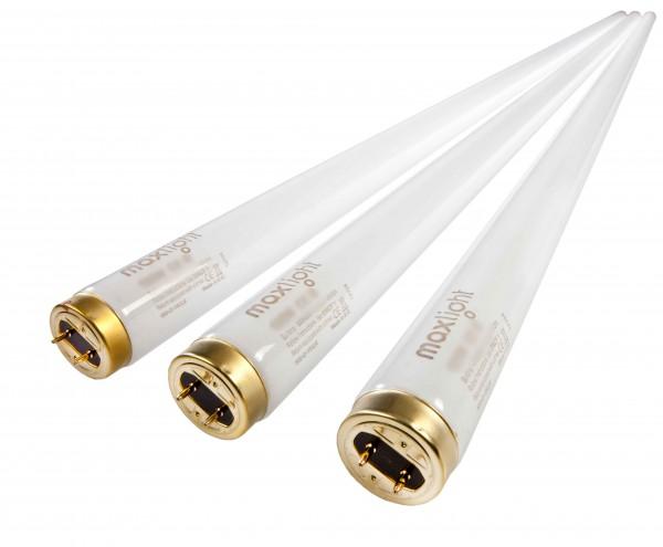 Komplettsatz Röhren für Hapro Onyx 14/5 T - maxlight